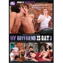 My Boyfriend Is Gay 3
